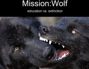 Mission:Wolf #3